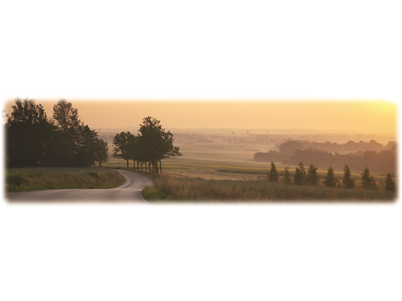 Country Road-Wilbert Legacy II Print