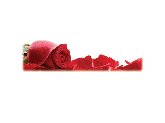 Red Roses-Wilbert Legacy Two Print