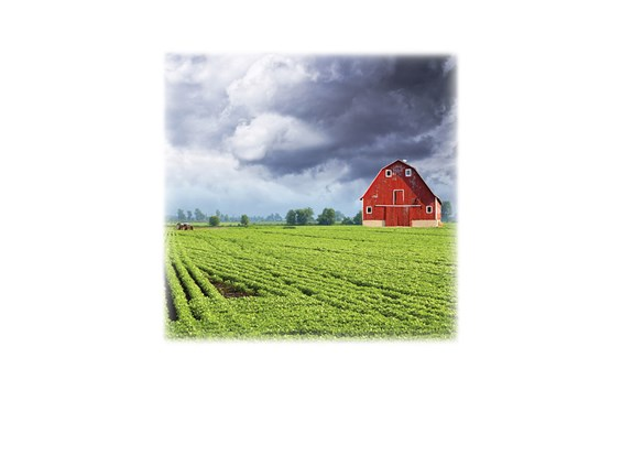 Green Field & Barn-Legacy Two Urn Vault Print