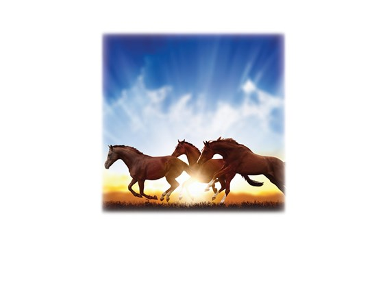 Horses-Legacy Two Urn Vault Print