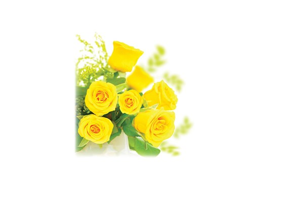 Yellow Roses-Legacy Two Urn Vault Print