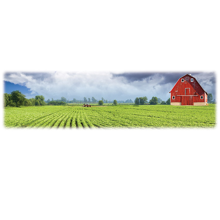 Green Field and Barn-Wilberty Legacy Two Print