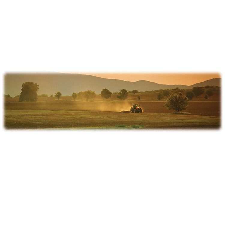 Farm Field and Tractor-Wilbert Legacy Two Print