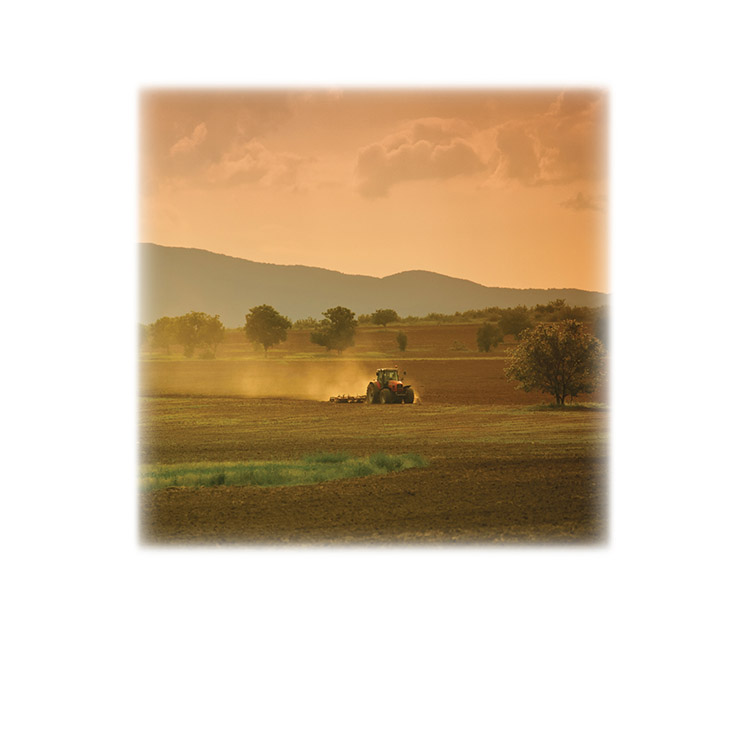 Farm Field & Tractor-Legacy Two Urn Vault Print