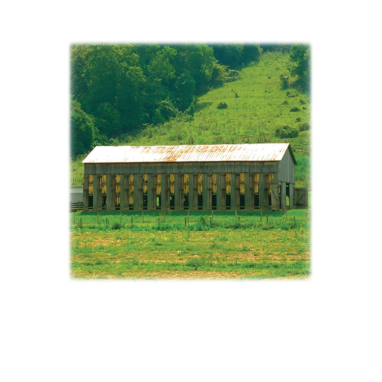 Tobacco Barn-Legacy Two Urn Vault Print